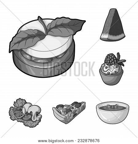 Vegetarian Dish Monochrome Icons In Set Collection For Design.vegetable And Milk Food Vector Symbol