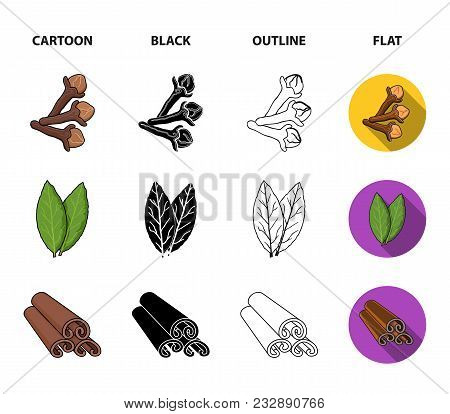 Clove, Bay Leaf, Nutmeg, Cinnamon.herbs And Spices Set Collection Icons In Cartoon, Black, Outline,