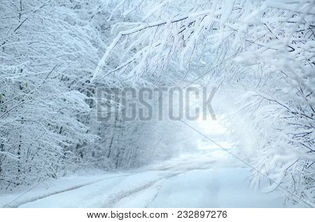 Winter Landscape With Road Snow Covered