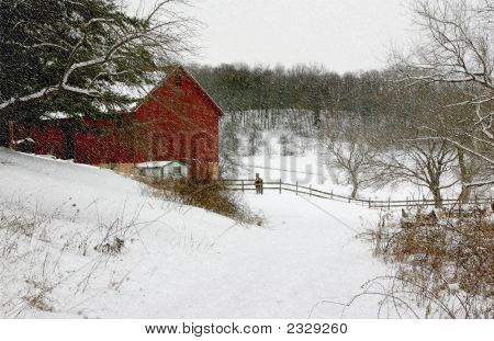 An old red dairy barn nestled in a rural valley on a snowing winter day with two horses standing nearby. poster