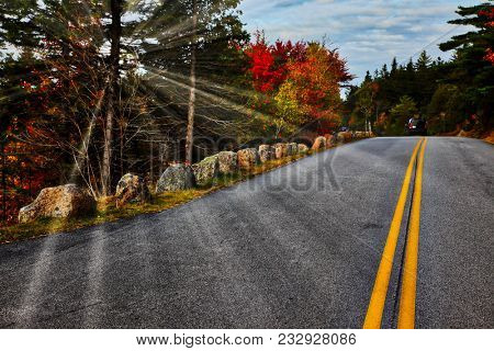 Sunrays with autumn colors in Acadia NP