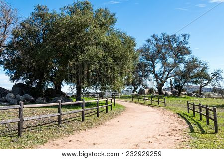 A Fence-lined Trail Curves Through A Wooded Area At Ramona Grasslands Preserve In San Diego, Califor