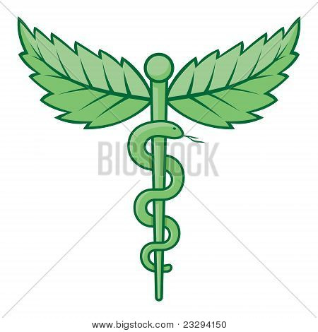 Caduceus With Leaves