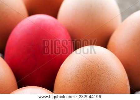 Eggs In The Magazine With A Single Red Egg. Close-up