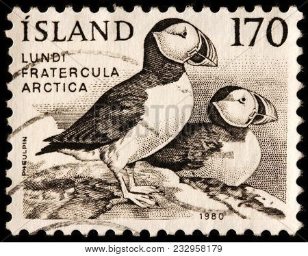 Luga, Russia - January 16, 2018: A Stamp Printed By Iceland Shows Atlantic (common) Puffin,  - Speci
