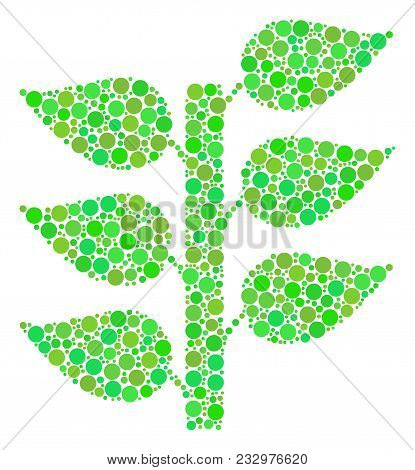 Flora Plant Collage Of Filled Circles In Various Sizes And Green Color Tints. Vector Round Dots Are