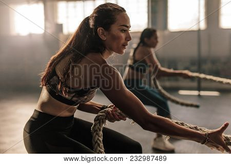 Two Young Women Doing Exercises With Rope At A Gym. Fitness Females Pulling Rope At Gym.