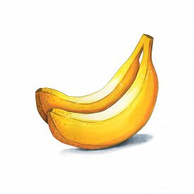 Bananas On A White Background. Sketch Done In Alcohol Markers. You Can Use For Greeting Cards, Poste