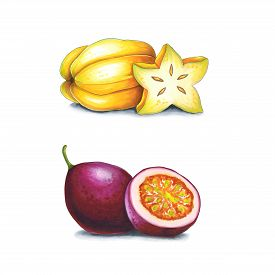 Passion Fruit And Carambola On A White Background. Sketch Done In Alcohol Markers. You Can Use For G