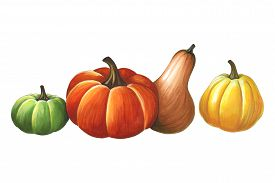 Pumpkins On A White Background. Sketch Done In Alcohol Markets. You Can Use For Greeting Cards, Post