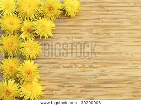 Dandelions on Wood with Copy Space