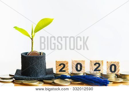 Wood Word Block 2020 And Graduation Hat With Small Plant Tree On Coins Money. Saving Money For Educa