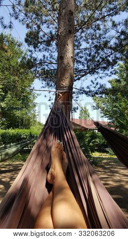 The Girl Is Lying In A Hammock. Woman Resting In A Hammock In Nature. Girls Legs In Hammock