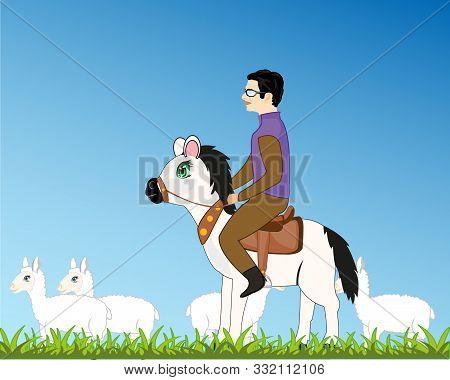 Man Shepherd On Horse And Herd Sheep