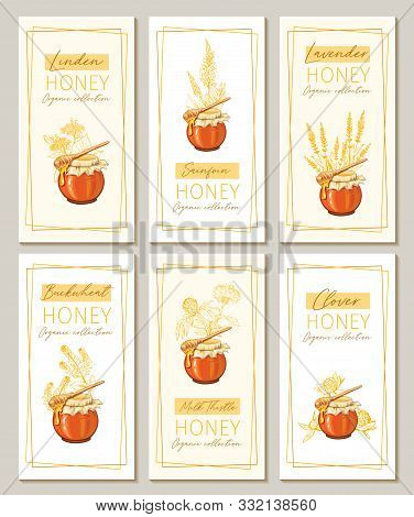 Honey Flowers Vintage Vertical Flyers Design. Engraved Clover, Milk Thistle And Sainfoin Plants With