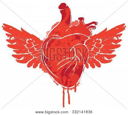 Vector Graphic Abstract Illustration Of Human Heart With Wings Isolated On White Background. Red Fly