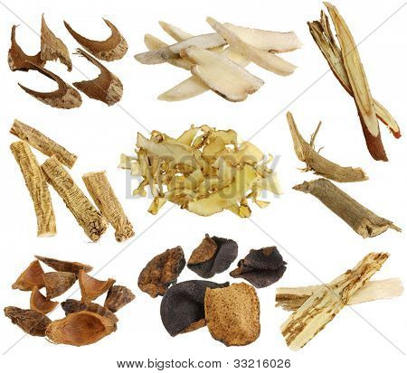 Herbal medicine : Assortment of Dried Chinese herbs isolated on white background (White peony root, licorice root, Dang Shen, Solomon's seal, Betel nut, Tangerine peels, Dong Quai)