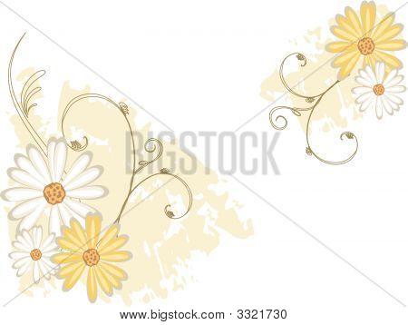 Grungydaisy  Flowers