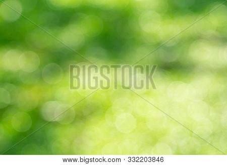 Green Bokeh Background  , Beautiful Abstract Green Blur On Natural Background. Light And Plant With