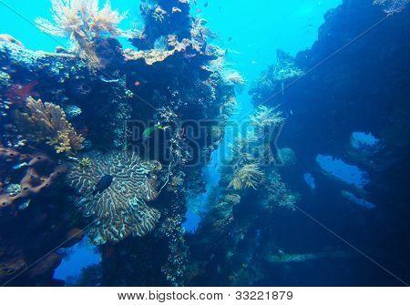 Podvodní střílet ztroskotání USAT svobody v Tulamben, Bali, Indonésie