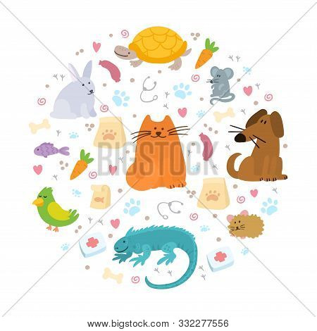 Pet Insurance. Circle With Color Doodle Pets Inside. Pet Care, Veterinary Banner, Background, Poster