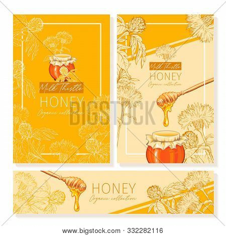 Honey Vintage Banners Design. Engraved Milk Thistle Honey Flower With Glass Honey Jar And Drop. Hand