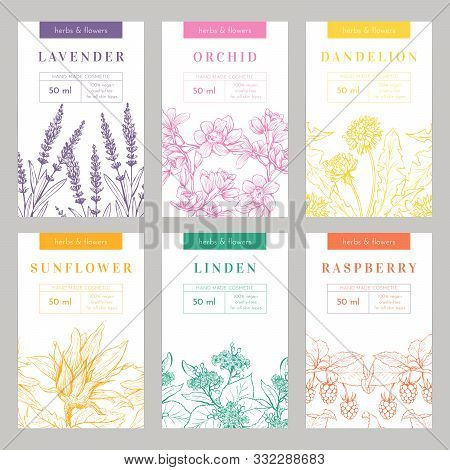 Hand Made Products Hand Drawn Vector Packaging Templates Set. Herbal Cosmetics, Natural Beauty Produ