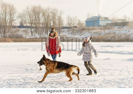 Joyful Teens Spend Time Together With Lovely Pet German Shepherd Dog On Walk In Winter Park On Sunny