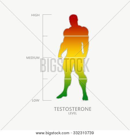 Hormone Testosterone Level Measuring Scale. Health Care Concept Illustration. Muscular Man Silhouett