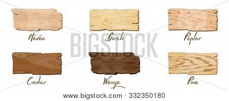 Empty Dark And Light Brown Wooden Banners, Sign Boards For Text, Lettering With Texture Of Hevea, Bi
