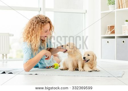 Happy girl relaxing with retriever puppies at home