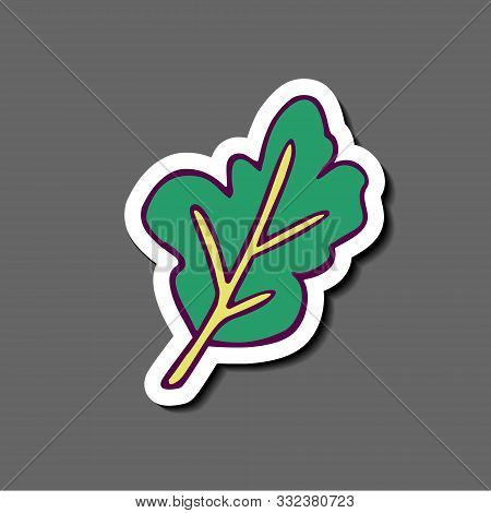 Sticker - Plant Leaf (mint, Spinach Or Arugula)  Hand-drawn In Cartoon Style, Colored Artwork Isolat
