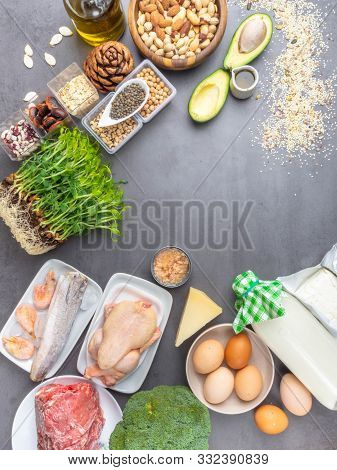 High Protein Food - Meat, Fish, Poultry, Nuts, Dairy Products, Eggs, Micro Greens, Beans, Avocado, O