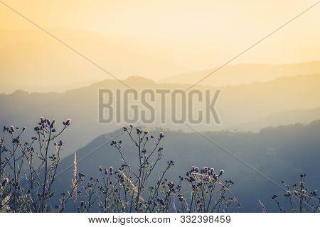 Mountain Range Nature Landscape. Mountain Layers Landscape. Summer In Mountain Meadow Landscape. Mea