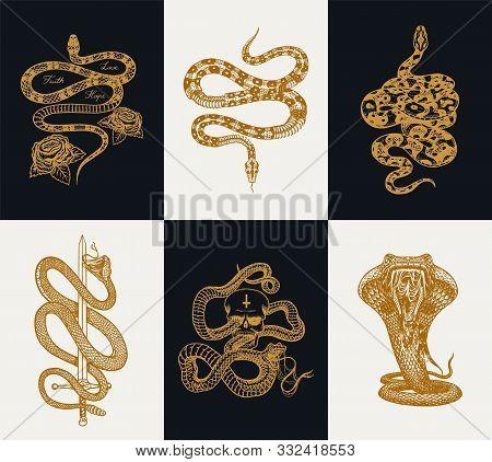 Milk Snake With Roses, Skeleton Royal Python With Skull, Reptile With Sword, Venomous Cobra. Poisono