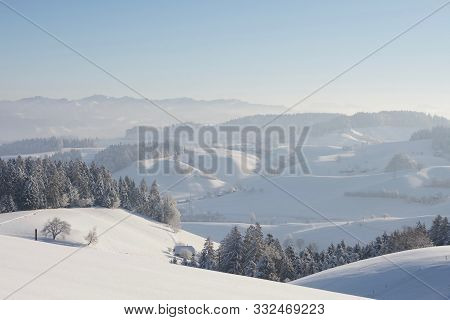 Panoramic Winter Landscape Covered In Fresh Powder Snow