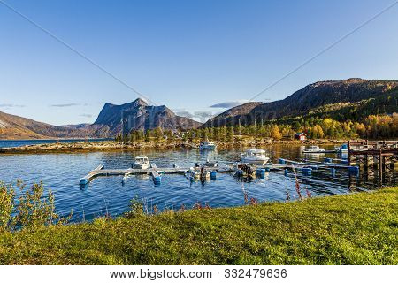 Wooden Dock In A Norway Fjord Near The Artic Circle