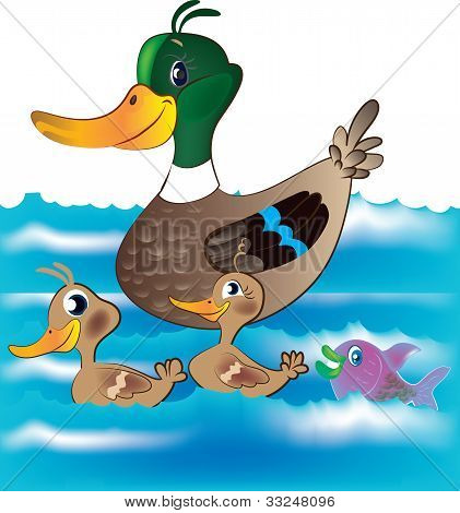 Ducks And Fish