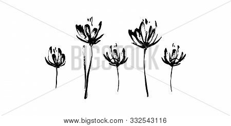 Set Of Hand Drawn Abstract Modern Flowers Silhouette Brush Ink Painting. Grunge Style Ink Painted El
