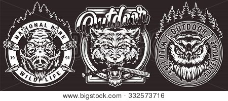 Vintage Wild Animals Emblems With Serious Owl Angry Wild Boar Cruel Wolf Head With Broken Baseball B