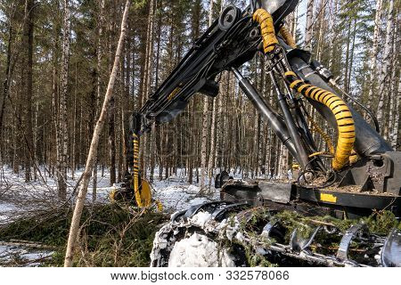Woodworking. Logger Busy Working In Winter Forest