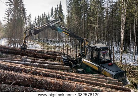 Forestry. Logger Loads Timber In Winter Woods