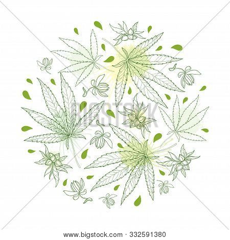 Vector Round Bunch Of Outline Cannabis Sativa Or Cannabis Indica Or Marijuana. Leaf, Flower And Seed