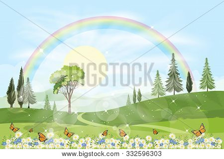 Panorama View Of Spring Field With Rainbow And Sun Shining In Foliage Forest,vector Cartoon Summer L