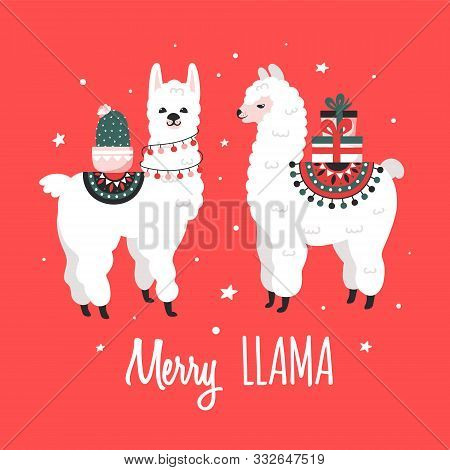 Merry Christmas Greeting Card With Cute Lamas. Vector Illustration.