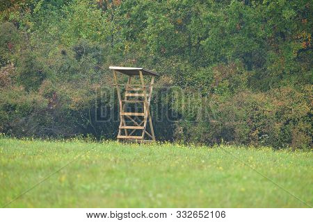 Wooden Lookout Tower For Birdwatching Wildlife Animal