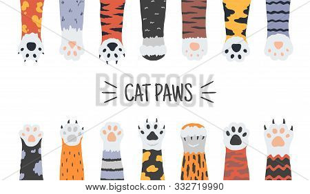 Cat Paws. Hand Drawn Funny Puppies And Kittens Claws And Foots, Wild Animals And Pets Paws. Vector D