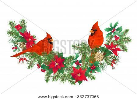Cardinal Bird - The Symbol Of Christmas. Christmas Wreath Of Winter Plants. Element For Design. Colo
