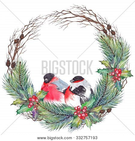Christmas Wreath With Red Holly Berries, Leaves, Pine Branches, Cones, Dry Twigs And Bullfinch Birds