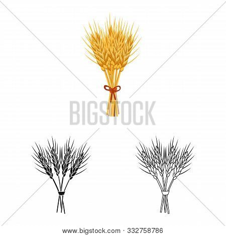 Vector Design Of Barley And Sheaf Icon. Collection Of Barley And Malt Stock Vector Illustration.